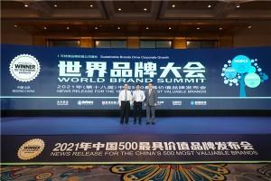 红宝石再登中国500最具价值品牌,定调民族企业发展新范式